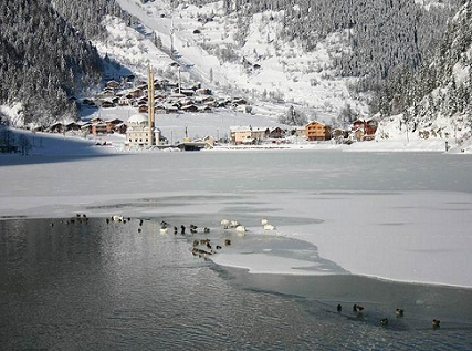 Uzungol in winter