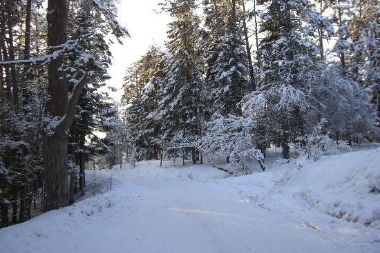 walking-around-lake-abant